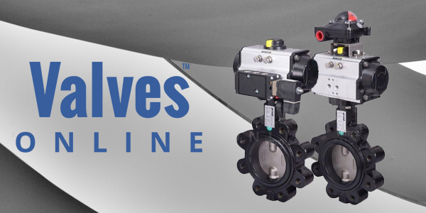 Economy Actuated Valves