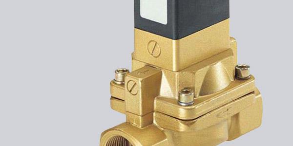 Solenoid valve seals